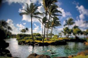 Grand Hyatt Kauai Saltwater Lagoon